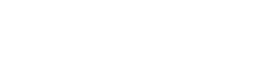 Japan Association of New Economy